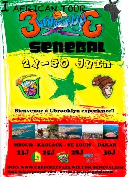 I African Tour Ubrooklyn - Senegal 2015